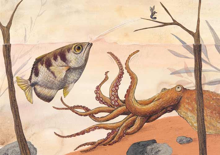 Spuckfisch
