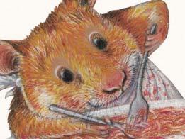 Am liebsten aß der Hamster Hugo Spaghetti mit Tomatensugo